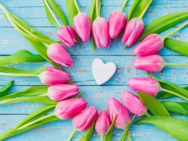 Love Spells in Al Maqwa